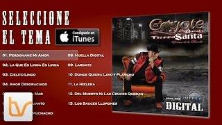 Coyote Y Su Banda Tierra Santa | Como Una Huella Digital Album Preview | ISA Music