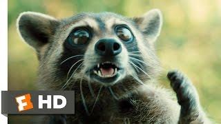 Furry Vengeance (11/11) Movie CLIP - Raccoon Fight (2010) HD