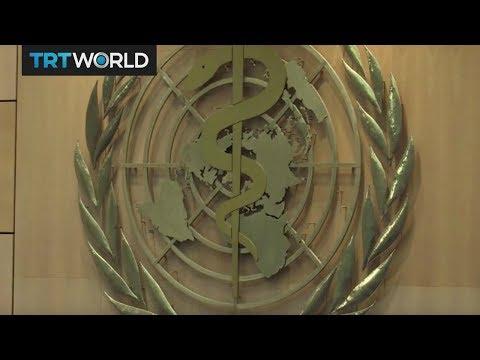 Insight: World Health Organization