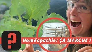 FAKE? #8.1 - Homéopathie: les preuves