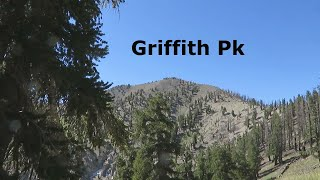 Griffith Peak via the South Loop Trail after the Fire