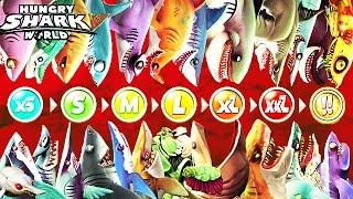 Hungry Shark World - All Sharks Info (Echo)
