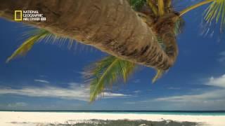 وثائقي  جزر الكاريبي = الجزر البريّة Geographic Abu Dhabi HD