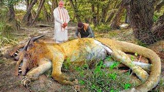 مخلوقات أسطورية غامضة التقطها عدسات الكاميرا بالصدفة