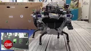 Adorable smartphone robot RoBoHoN