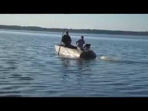 Лодочный мотор болотоход bawad на Казанке