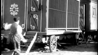 O CIRCO - Charles Chaplin