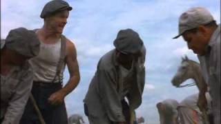 The Shawshank Redemption - Heywood and the Horse Apple