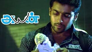 Ayan Tamil Movie scenes | Surya & Ponvannan Seize Cocaine from Akashdeep Saighal | Surya Mass Scene