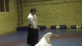 Iran aikido Rey dojo safarali Sensei