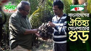 The tasty and rare nipa palm juice of Bangladesh (গোলপাতার রস/গুড়)