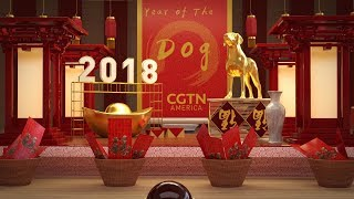 Happy Chinese New Year from CGTN! Year of the Dog
