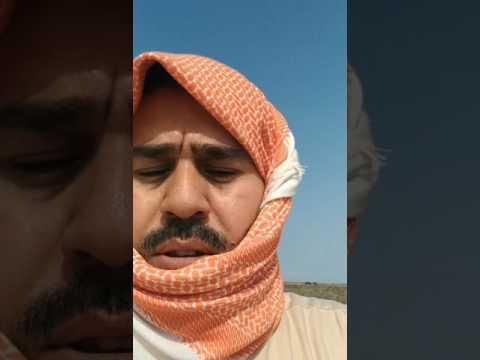 جديد #ابوبشير_العنزي فقع الشرقية38 تغطية سنابية مطانيخ مكشات الشرقية اليوم الأثنين 18-4-1438