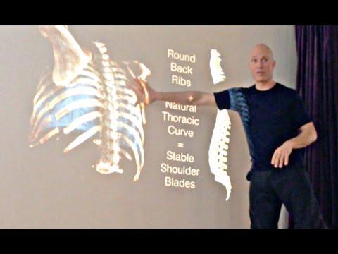 Rolf Pechukas ~ Yoga for the UPPER BACK, 2015 ~ Scapulae