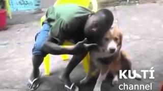 Không nên quay phim với chó, nếu không sẽ bị như thế này ... cho chừa