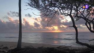 Kenya - Along the Coast