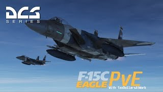 Fighter Sweep over Iran || DCS Coop PvE