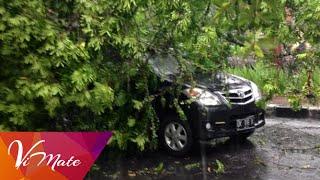 Badai Hujan Angin Sabtu, 21 Februari 2015 di Bali merata, termasuk Ubud Monkey Forest.