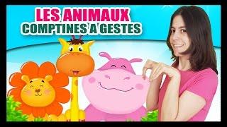 Comptines à gestes pour bébés et comptinettes sur les animaux - Brousse - Titounis