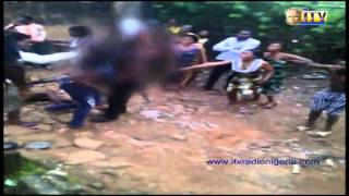 Tenants strip policewomen naked in Benin
