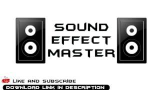 Surprise motherfucker effect sound [Download link]