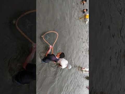 Xxx Mp4 Tangkap Ikan Sungai Tanag 3gp Sex