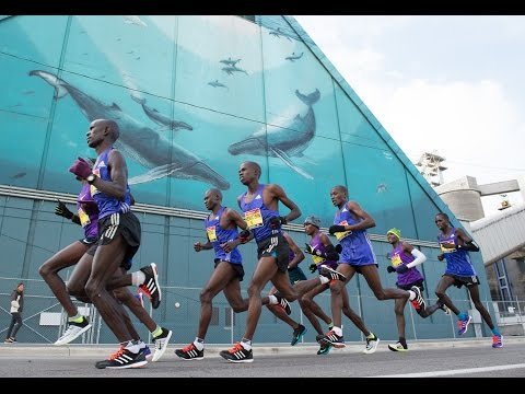 Scotiabank Toronto Waterfront Marathon 2015 - LIVE Broadcast