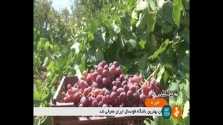 Iran 2nd Grape festival, Naghan district, Kiar county دومين جشنواره انگور بخش ناغان كيار ايران