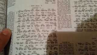 The Interlinear Bible Hebrew Greek English Unboxing and Review - with STRONG's CONCORDANCE Numbers