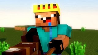 LowLevelNoob (Minecraft Animation)