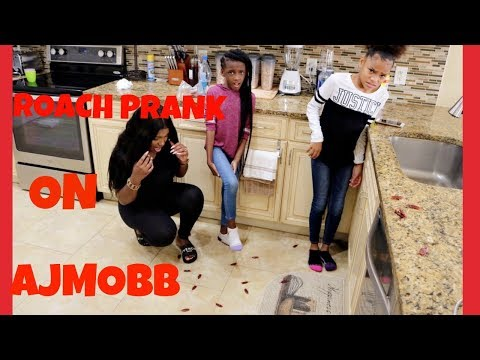 Xxx Mp4 Cockroaches In AJ MOBB S New Mansion Prank EXTREMELY FUNNY 3gp Sex