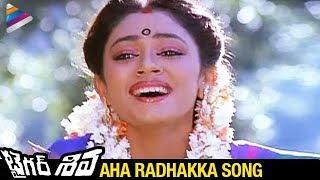 Tiger Shiva Movie Songs | Aha Radhakka Song | Rajnikanth | Shobana | Ilayaraja