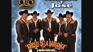 ARBOLES DE LA BARRANCA - CARLOS Y JOSE