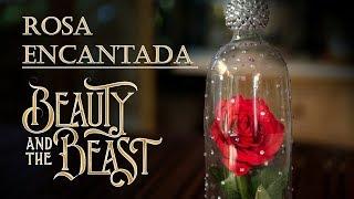 Rosa Encantada de Beauty and The Beast o La Bella y la Bestia