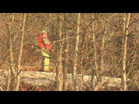 Western Kentucky Rabbit Hunt