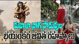 మహిళా నాగ సాదుల జీవిత రహస్యాలు !Mysterious & Unknown Facts About  Mahila Naga Sadhu's ! In Telugu !