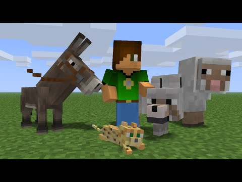Animal School: Meet the Students (Minecraft Animation)