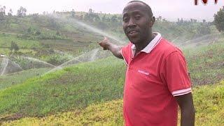 On The Farm: Kapchorwa farmer overcomes unpredictable weather with irrigation farming