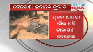 Elderly man killed by crocodile while bathing in river in Kendrapara