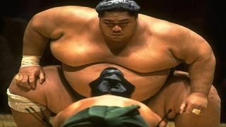 هل تعلم لماذا مصارعي السومو أوزانهم ثقيلة؟