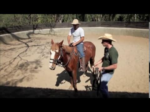 Doma de cavalos selvagens por Eduardo Moreira inedito no Brasil
