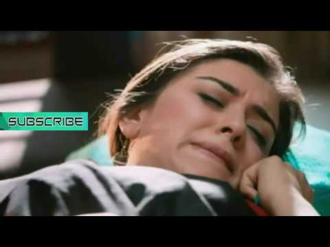 Xxx Mp4 Hansika Motwani Sexiest Seducing Expressions Cleaveage Show Ever Too Hot Latest Release 2016 3gp Sex