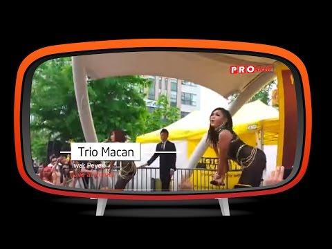 Konser Trio Macan @ Korea (Iwak Peyek) Mp3
