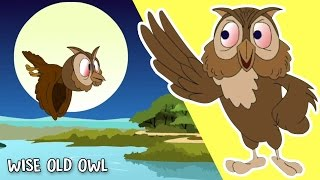 Wise Old Owl   Animated Nursery Rhyme For Children   Cartoon Songs    WOW Juniors