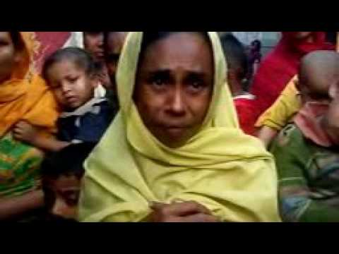 Rohingya daily news today 29/11/16 please help them