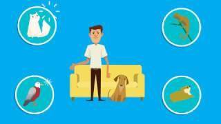 Emotional Support Animal ESA Letter Explainer Video