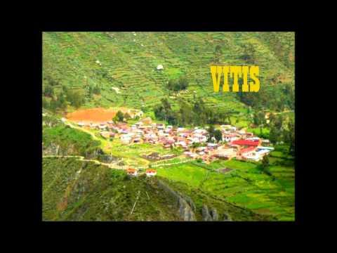 Provincia de Yauyos y sus 33 Distritos Mix Banda BOSH