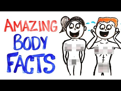 Why Your Body Is AMAZING