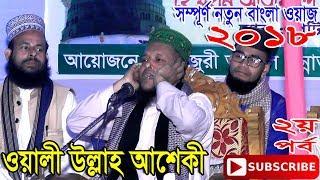 waliullah aashiqui | ওয়ালী উল্লাহ আশেকী ওয়াজ | new bangla waz oli ullah aashiqui | Part 2