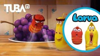[Official] Bubble - LARVA Season 2 Episode 2 - Comedy 3D Animation